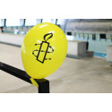 Luftballon AI Schweiz